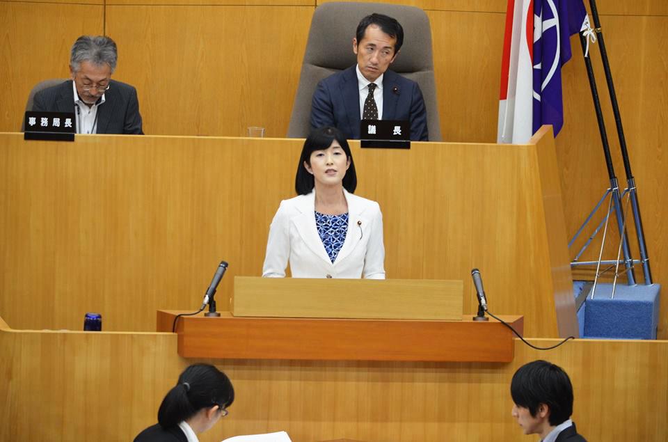 平成29年第3回定例議会