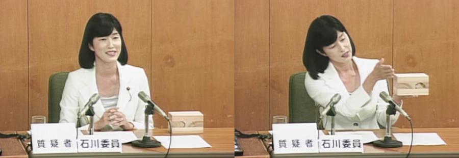 平成29決算特別委員会